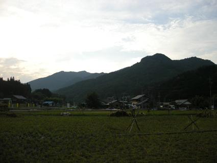 DSCN8470.jpg